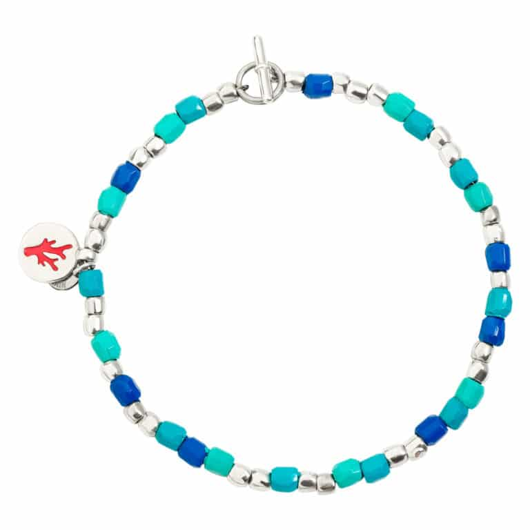 Dodo - Granelli Ténaka recycled plastic blue, silver plate with coral in red enamel